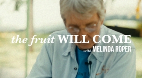 Preview_the_fruit_will_come.title