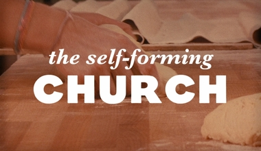 The Self Forming Church
