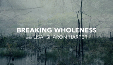 Breaking Wholeness