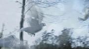 Doves Loop