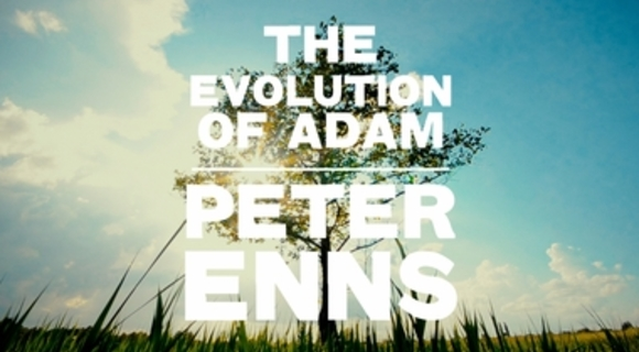 Preview_the_evolution_of_adam