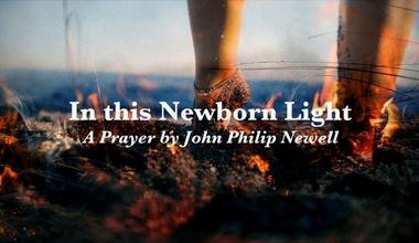 in this Newborn Light