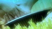 Washing Feet Loop