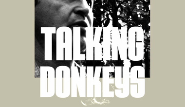 Talking Donkeys