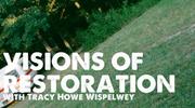 Visions Of Restoration