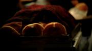 Daily Bread Loop