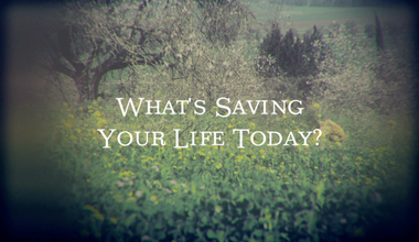 What's Saving Your Life Today?