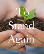 To Stand Again
