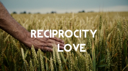 The Reciprocity of Love