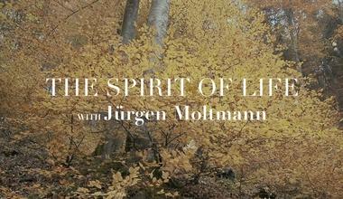 The Spirit of Life