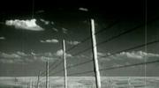 Black and White Prairie Loop