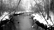 Black and White Icy River Loop