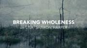 Breaking Wholeness