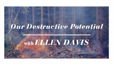 Our Destructive Potential