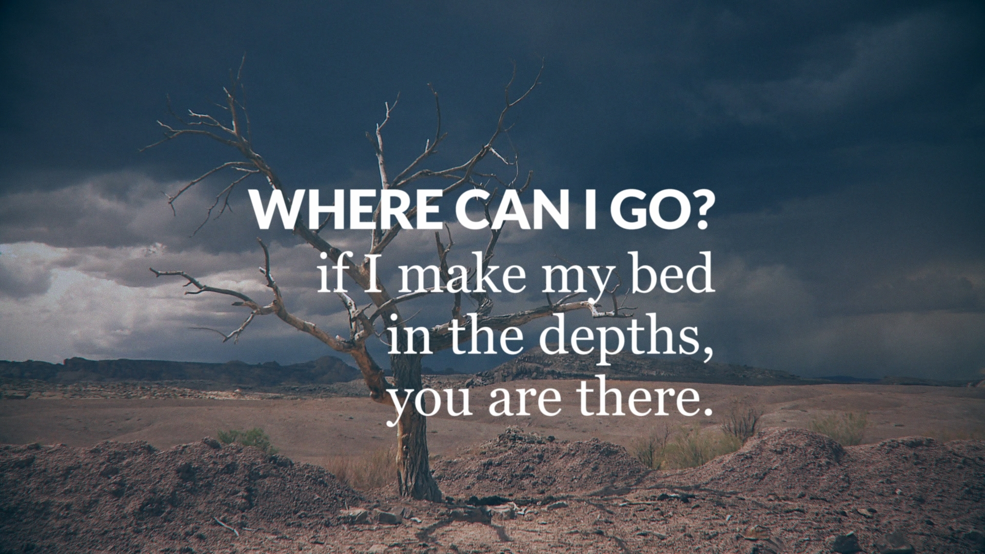 Where Can I Go?