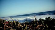 Ocean Loop 4