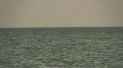 Vintage Ocean Loop