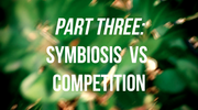 Symbiosis vs Competition